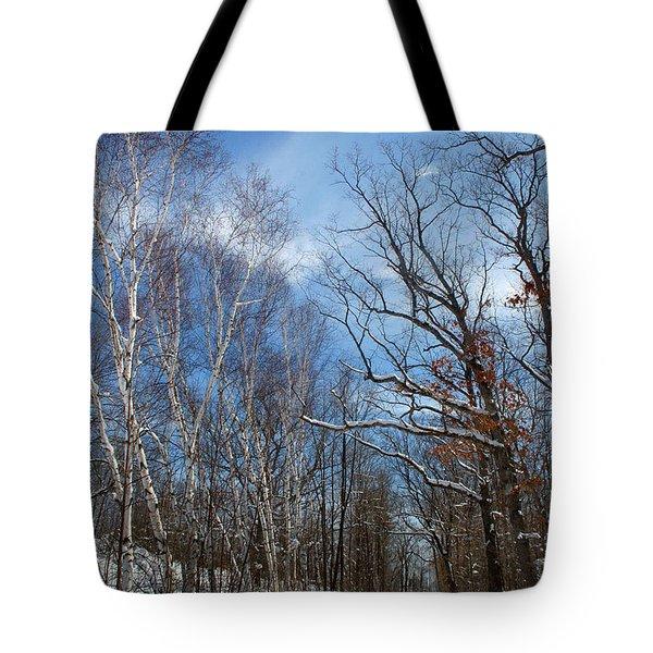 Wisconsin Winter Road Tote Bag