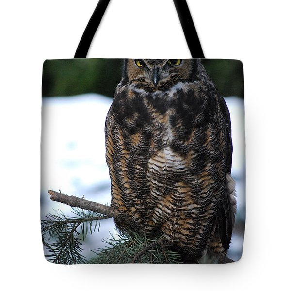 Tote Bag featuring the photograph Wise Old Owl by Sharon Elliott