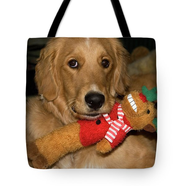 Wish For A Christmas Friend Tote Bag