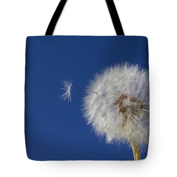 Tote Bag featuring the photograph Wish Granted by Richard Stephen