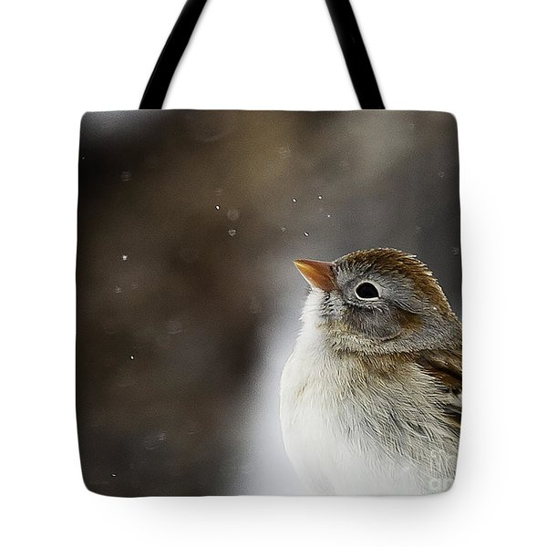Wishing Upon A Snowflake  Tote Bag