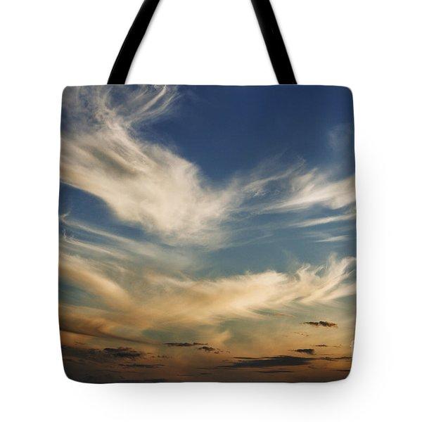 Wisp Tote Bag by Andrew Paranavitana