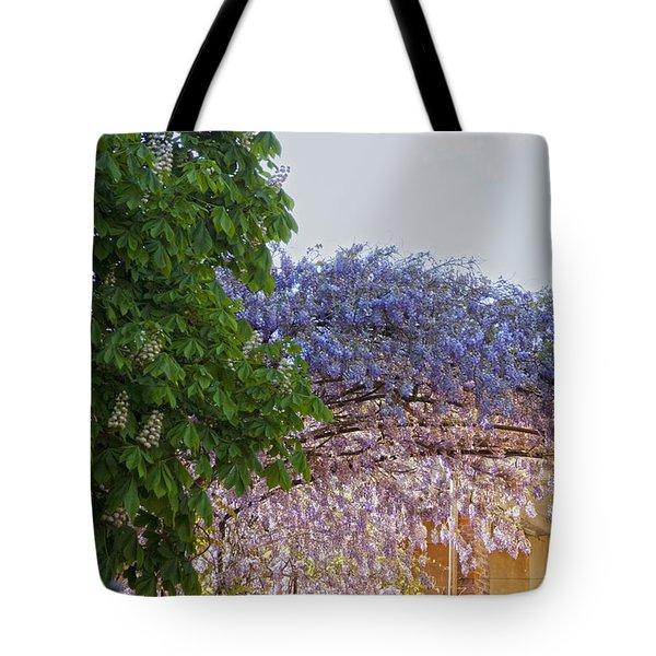 Tote Bag featuring the photograph Wisteria by Raffaella Lunelli