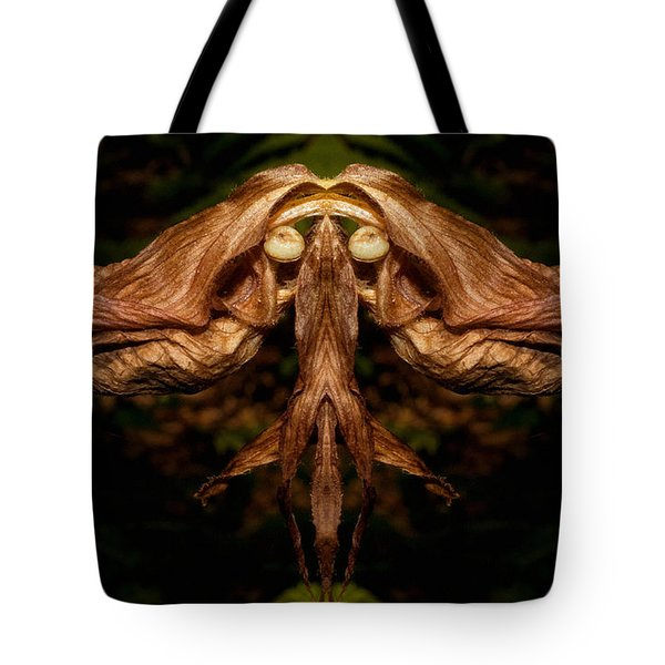 Witch Ballet Tote Bag by WB Johnston