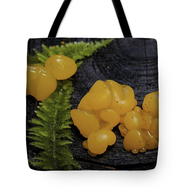Tote Bag featuring the photograph Witches Butter by Betty Depee