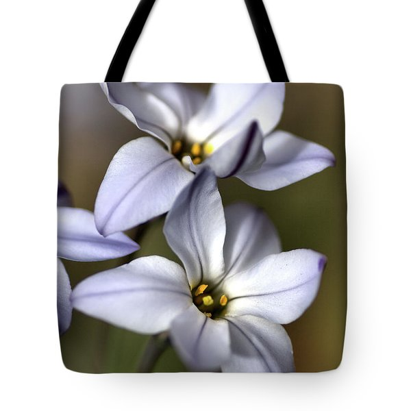 Tote Bag featuring the photograph With Company by Joy Watson