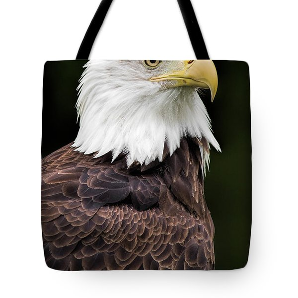 With Dignity Tote Bag