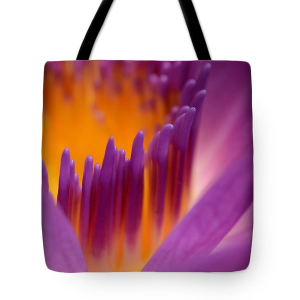 Within Heaven's Reach Tote Bag