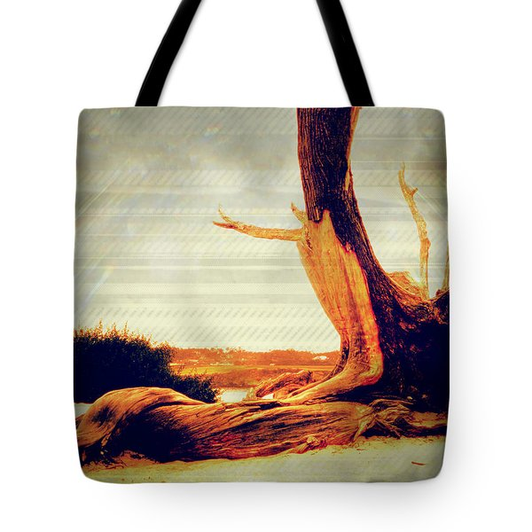 Withstanding The Storms Tote Bag