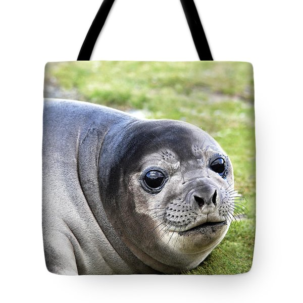 Woeful Weaner Tote Bag