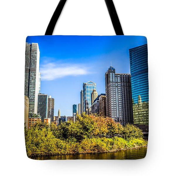 Wolf Point In Chicago Tote Bag by Paul Velgos