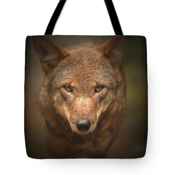 Wolf Stare Tote Bag by Karol Livote