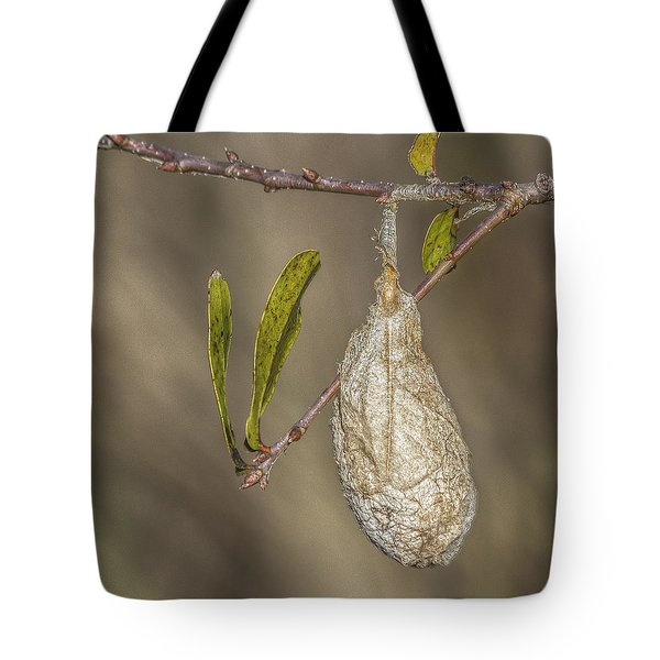 Wonder What's Inside Tote Bag by Jane Luxton