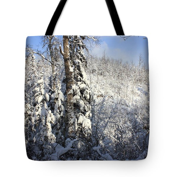 Wonderland Tote Bag by Jim Sauchyn