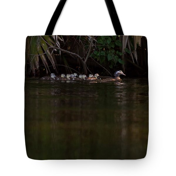 Wood Duck And Ducklings Tote Bag