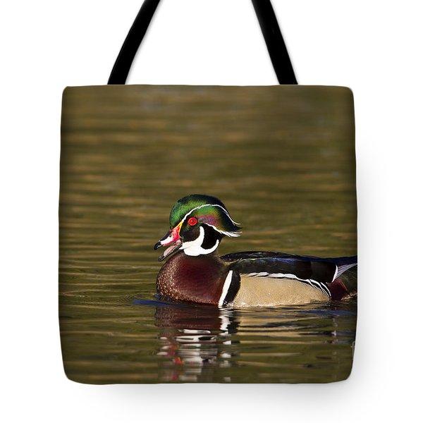 Wood Duck Calling Tote Bag