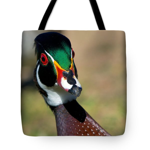 Wood Duck Drake Looking At Me Tote Bag by Stephen  Johnson