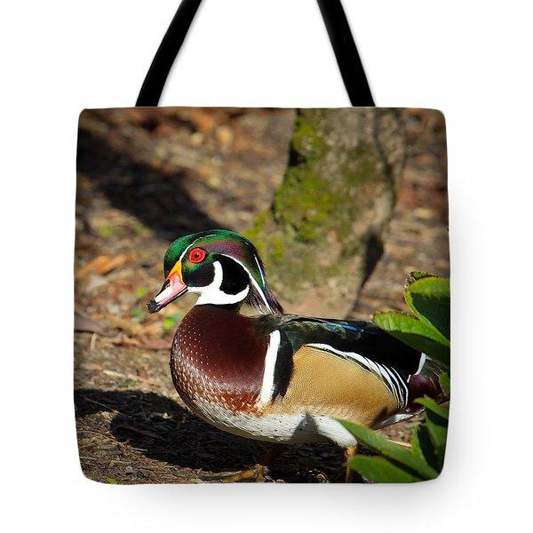 Wood Duck In Hiding Tote Bag by Steve McKinzie