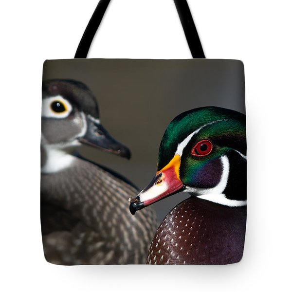 Wood Duck Pair Tote Bag by Stephen  Johnson
