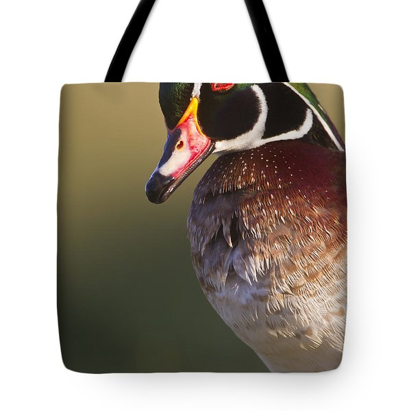 Tote Bag featuring the photograph Wood Duck Portrait by Bryan Keil