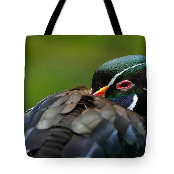 Wood Duck Upclose Tote Bag by Karol Livote