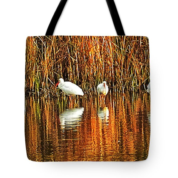 Wood Storks And 2 Ibis Tote Bag
