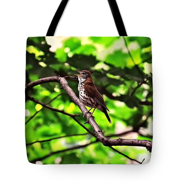 Wood Thrush Singing Tote Bag
