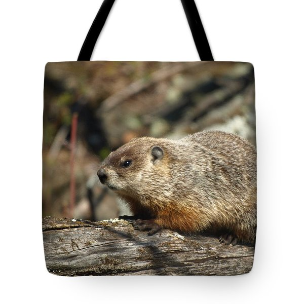 Tote Bag featuring the photograph Woodchuck by James Peterson