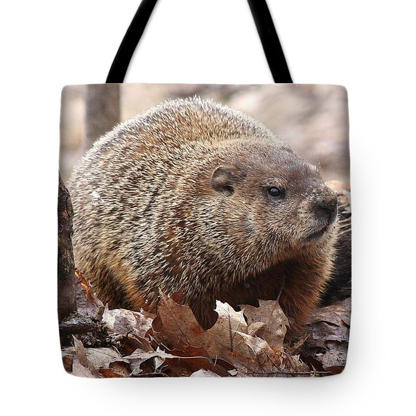 Woodchuck Watching Tote Bag