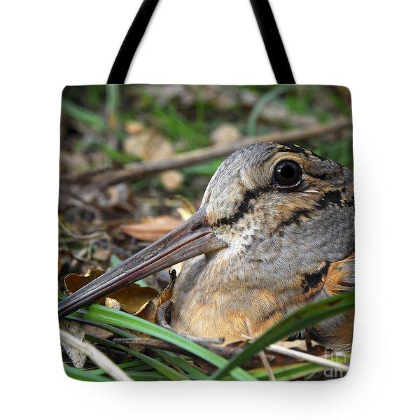 Woodcock Beak Close Up Tote Bag