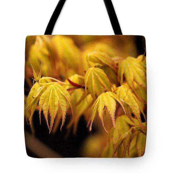 Woodland Awakening Tote Bag