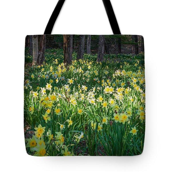 Woodland Daffodils Tote Bag by Bill Wakeley