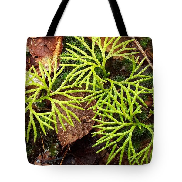 Tote Bag featuring the photograph Woodland Design by Joy Nichols