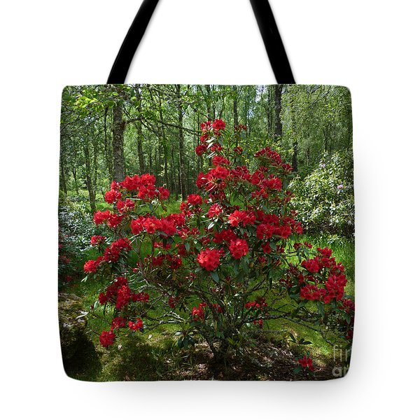 Tote Bag featuring the photograph Azalea Woodland Garden by Phil Banks