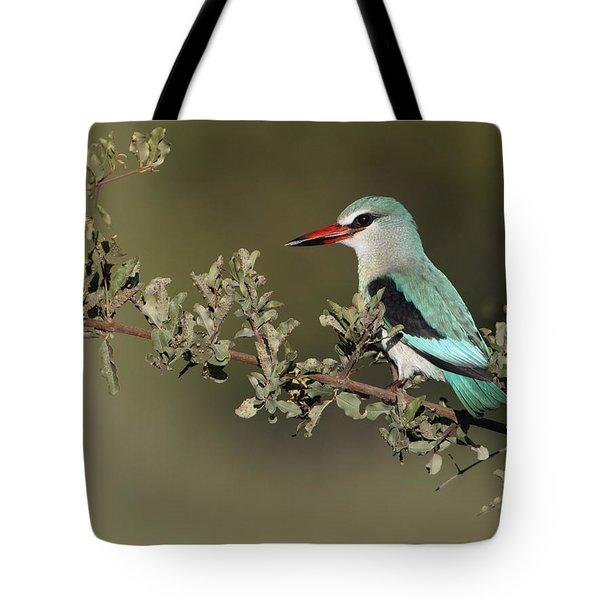 Woodland Kingfisher Kruger Np South Tote Bag