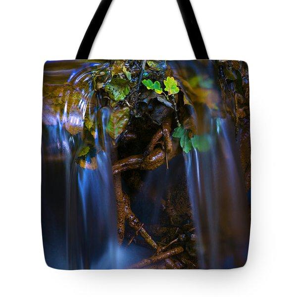 Woodland Stream 1 Tote Bag