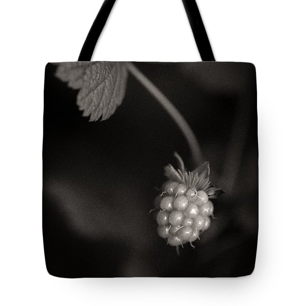 Woodland - Study 10 Tote Bag by Dave Bowman