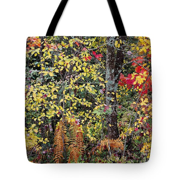 Tote Bag featuring the photograph Woodland Tapestry by Alan L Graham