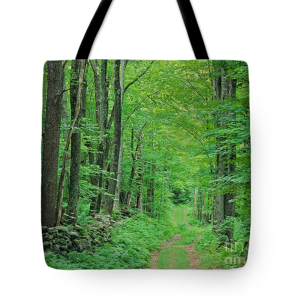 Woodland Trail Tote Bag by Alan L Graham