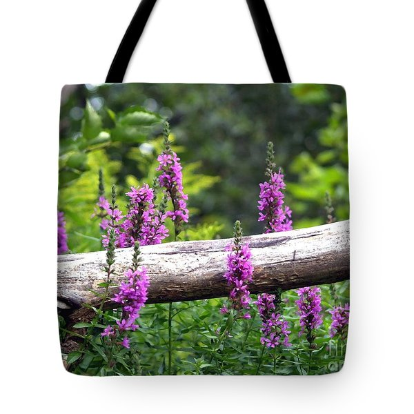 Woodland Treasures Tote Bag by Susan  Dimitrakopoulos