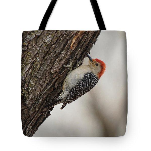 Woodpecker Tote Bag by Alan Hutchins