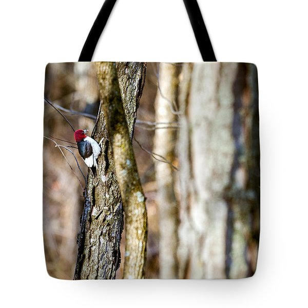 Tote Bag featuring the photograph Woody by Sennie Pierson