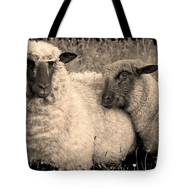 Tote Bag featuring the photograph Wooly Love by Jennifer Wright