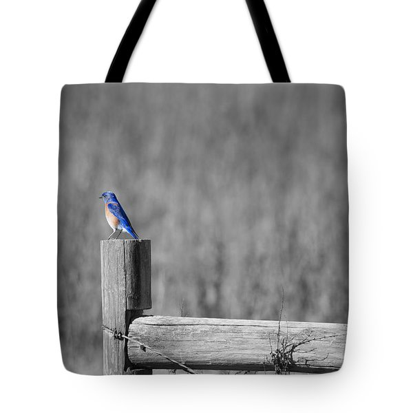 World Of Blue Tote Bag
