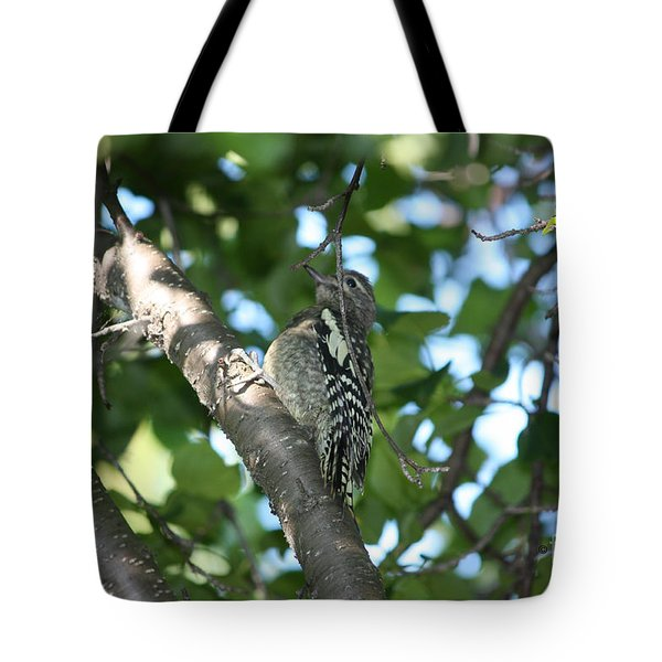 Worn Out Woodpecker Tote Bag