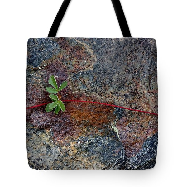 Wrapped Rock Tote Bag