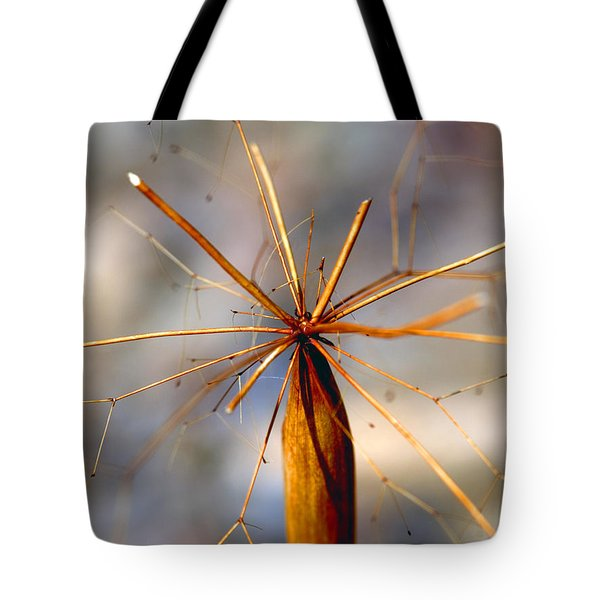Tote Bag featuring the photograph Wth? by Joe Schofield