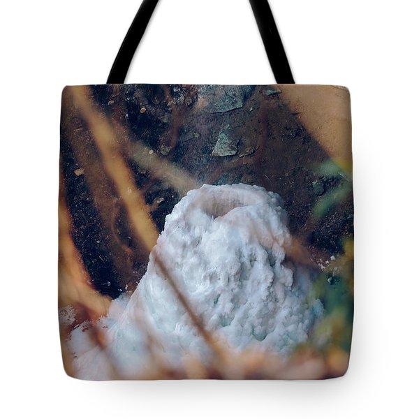 Yahoo Falls Frozen 2 Tote Bag