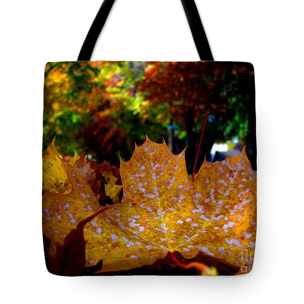 Year After Year Tote Bag