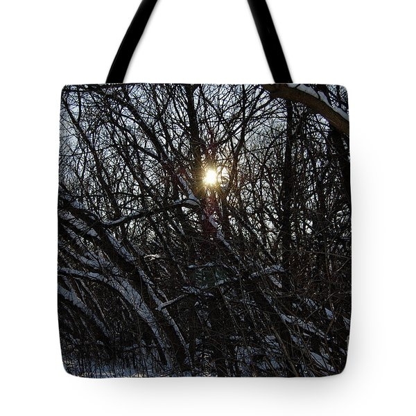 Yearning For Spring By Jammer Tote Bag by First Star Art